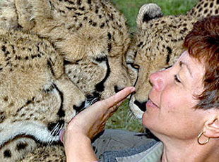 South Africa_Cheetah-Conservation_web.jpg