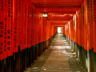 Japan_Kyoto_gates-in-the-Inari-Shrine_web.jpg