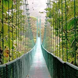 Tours-Sightseeing Costa Rica eco Monte Verde cloud forest hanging bridge